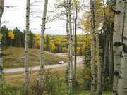 MOUNTAIN WOOD ESTATES